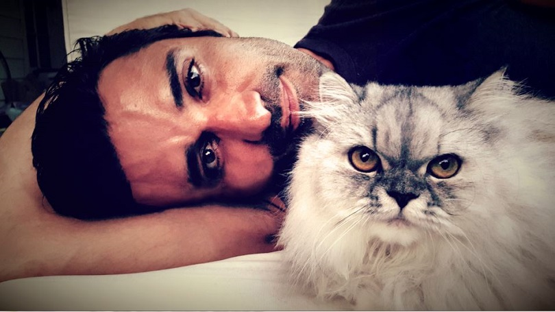 γάτα άντρας γατάκι αγκαλιά