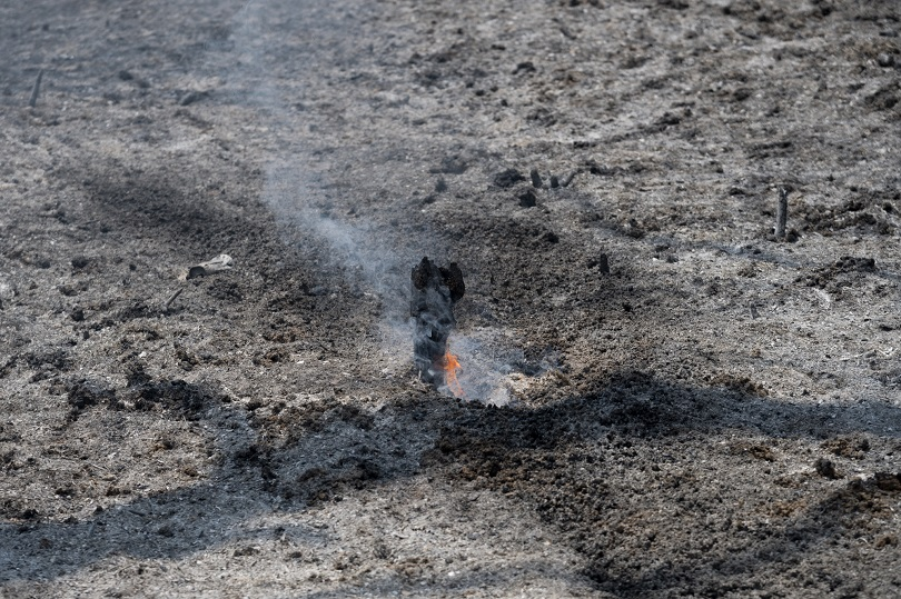 τατόι πυρκαγια φωτια
