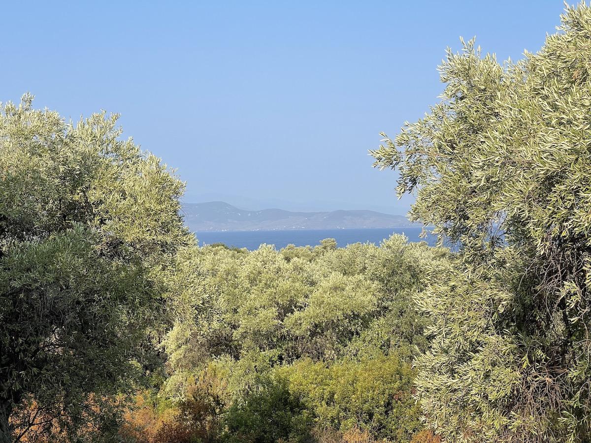 Νησί Παλαιό Τρίκερι