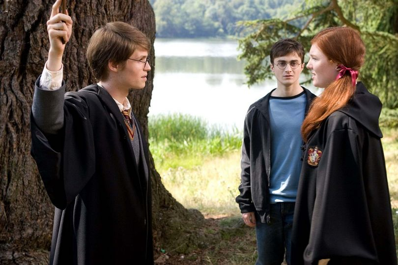 james and lily potter harry potter