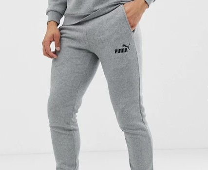 Puma Essentials skinny fit joggers in grey